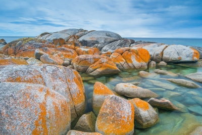 From the West Coast to the Bay of Fires